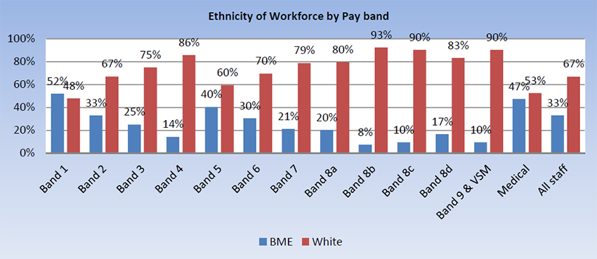 Ethnicity of workforce