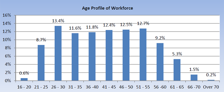 Workforce profile